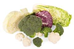 Различные типы капусты: изолированные брокколи, китаец, красный цвет и цветная капуста Стоковые Фото