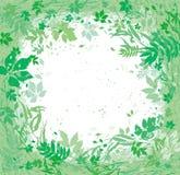 Различные травы и листья летая вокруг стоковая фотография rf