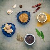 Различные травы и специи имбирь, семя фенхеля, высушили тимиан, шалфей le Стоковая Фотография RF