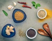 Различные травы и специи имбирь, семя фенхеля, высушили тимиан, шалфей le Стоковые Изображения