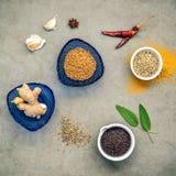 Различные травы и специи имбирь, семя фенхеля, высушили тимиан, шалфей le Стоковое Изображение