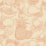 Различные тропические плодоовощи Иллюстрация вектора