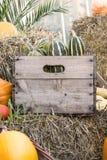 Различные тыквы в деревянной коробке Стоковое фото RF
