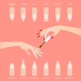 Различные формы ногтя Перста женщины иллюстрация вектора