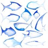 Различные формы рыб Стоковые Изображения