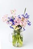 Различные цветки гиацинта в стеклянном опарнике Стоковые Изображения RF