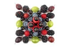 Различные ягоды в форме квадрата на белой предпосылке Стоковые Изображения