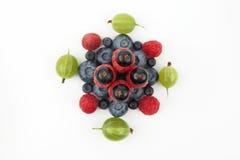 Различные ягоды в форме квадрата на белой предпосылке Стоковая Фотография