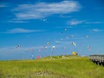 Различный красочный летать змеев Стоковые Фотографии RF