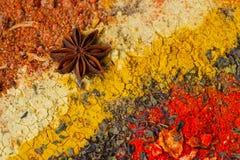 Различный органический крупный план специй Взгляд сверху Яркий красочный комплект, предпосылка еды с космосом для вашего текста Стоковые Фото