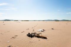 Различный отброс на песочном seashore брошенном океанские волны голубой желтый цвет неба песка фокус к более низким и средним ном Стоковое фото RF