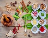 Различный тайской еды варя ингридиенты для шага карри специи красного Стоковая Фотография