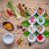Различный тайской еды варя ингридиенты для шага карри специи красного Стоковые Изображения
