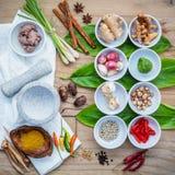 Различный тайской еды варя ингридиенты для шага карри специи красного Стоковое Фото