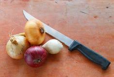 4 различных вида луков и старого ножа Стоковое Изображение
