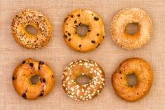 6 различных вкусных свежих бейгл на мешковине Стоковые Фото