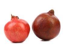 2 различных гранатового дерева. Стоковое фото RF