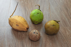 4 различных кокоса на таблице Стоковые Фотографии RF