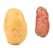 2 различных свежих картошки. Стоковая Фотография RF