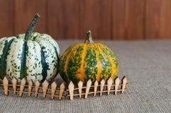 2 различных тыквы за загородкой игрушки деревянной Стоковые Изображения