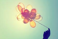 раздувает голубое цветастое небо Стоковое Изображение RF