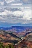 Район дикой природы каньона Salt River, национальный лес Tonto, Gila County, Аризона, Соединенные Штаты стоковые изображения