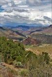 Район дикой природы каньона Salt River, национальный лес Tonto, Gila County, Аризона, Соединенные Штаты стоковое фото rf