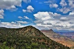 Район дикой природы каньона Salt River, национальный лес Tonto, Gila County, Аризона, Соединенные Штаты стоковые фотографии rf