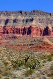 Район дикой природы гор запруды бобра Стоковые Фотографии RF