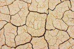район неорошаемого земледелия Стоковое Фото