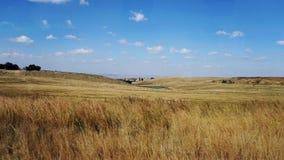 Район неорошаемого земледелия в Южной Африке Стоковое фото RF