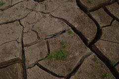 Район неорошаемого земледелия обрабатывая землю солнечный день Стоковая Фотография RF