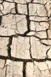 Район неорошаемого земледелия с треснуто Стоковые Изображения RF