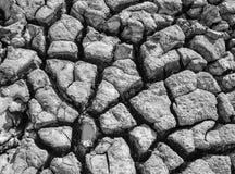 Район неорошаемого земледелия черно-белый Стоковые Фотографии RF