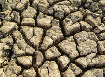 район неорошаемого земледелия Стоковые Изображения RF
