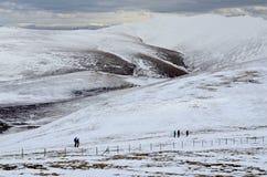 Район озера в зиме Стоковые Изображения RF