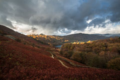 Район озера Windermere, озера, Cumbria, Англия Стоковое Изображение RF