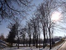 район парка в зиме окруженной деревьями Стоковые Фотографии RF