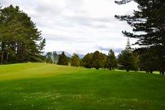 Район поля для гольфа грубый с зеленым цветом и деревьями Стоковые Изображения RF