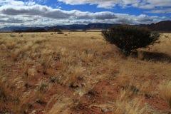 Район пустыни около горной цепи в Намибии Стоковое Изображение RF