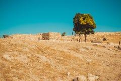 Район цитадели Аммана, Джордан археологическое место Туристическая индустрия каникула территории лета katya krasnodar перемещение Стоковая Фотография