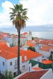 Район Alfama осмотренный от miradouro точки зрения Санты Luzia с пальмой на переднем плане и церковью Санты Estevao и Стоковая Фотография