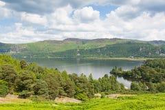 Район Cumbria Англия Великобритания озера воды Derwent залива Brandelhow Стоковые Фотографии RF