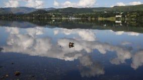 Район Cumbria Англия Великобритания озера Ullswater живой природы с горами и голубым небом на красивый летний день видеоматериал