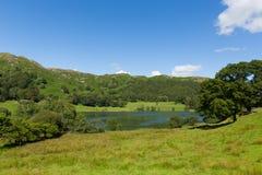 Район Cumbria Англия озера Loughrigg Тарн расположенная к северу от Windermere и деревни моста Skelwith Стоковые Фото