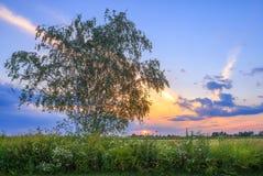 Район Ramenskiy, Россия Стоковое Изображение