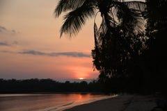 Рай Австралии тропический пляжа Kawarra на восходе солнца стоковые изображения rf