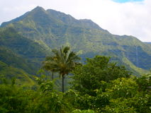 Рай Гаваи стоковая фотография