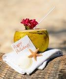 рай кокосов коктеила пляжа карибский Стоковые Изображения RF
