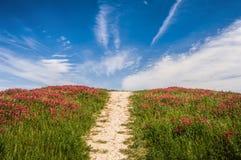 рай к путю Стоковые Изображения RF